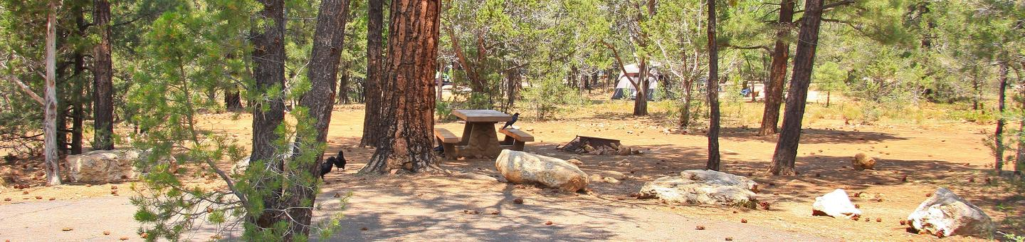 Picnic table, fire pit, and parking spot, Mather CampgroundPicnic table, fire pit, and parking spot for Juniper Loop 136, Mather Campground