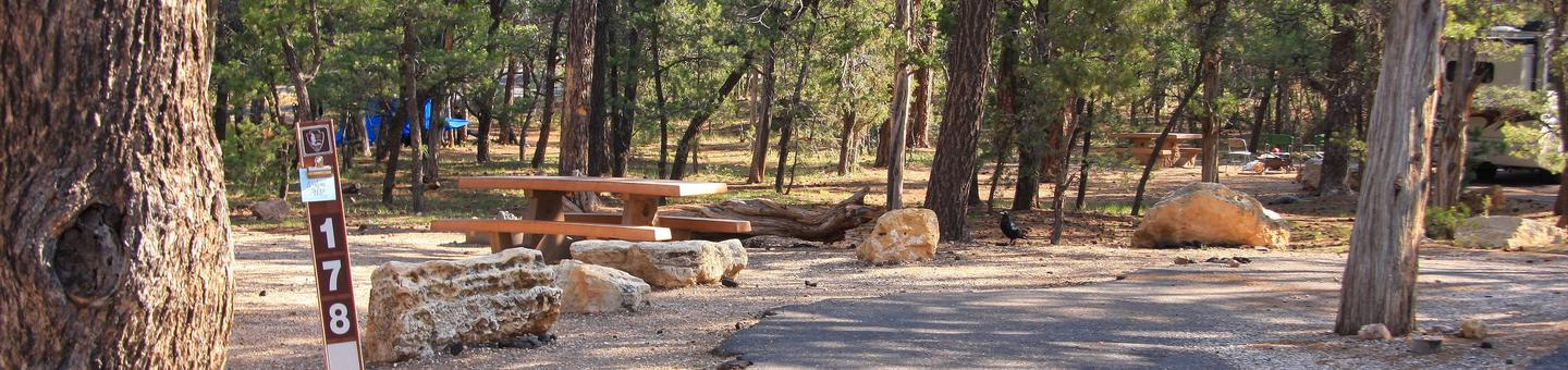 Picnic table, fire pit, and parking spot, Mather CampgroundPicnic table, fire pit, and parking spot for Juniper Loop 178, Mather Campground