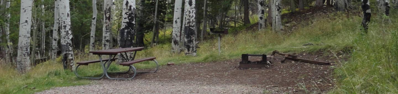 CampgroundCampsite 7