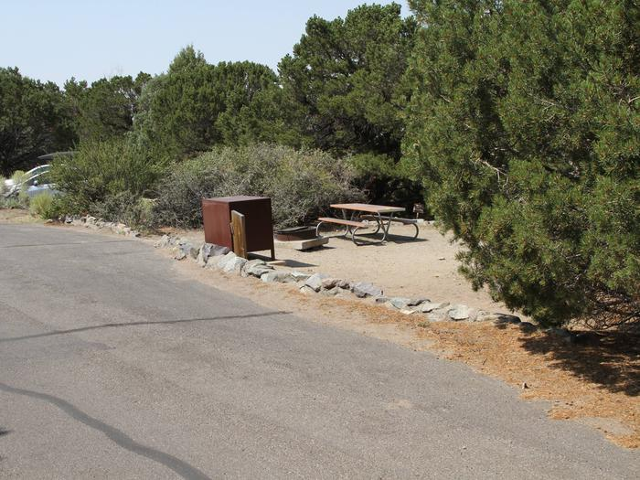 View of Site #59 parallel parking area and tent site, with bear box, fire ring and picnic table. Recreational vehicles with slide outs not recommended due to width of road.Site #59, Pinon Flats Campground