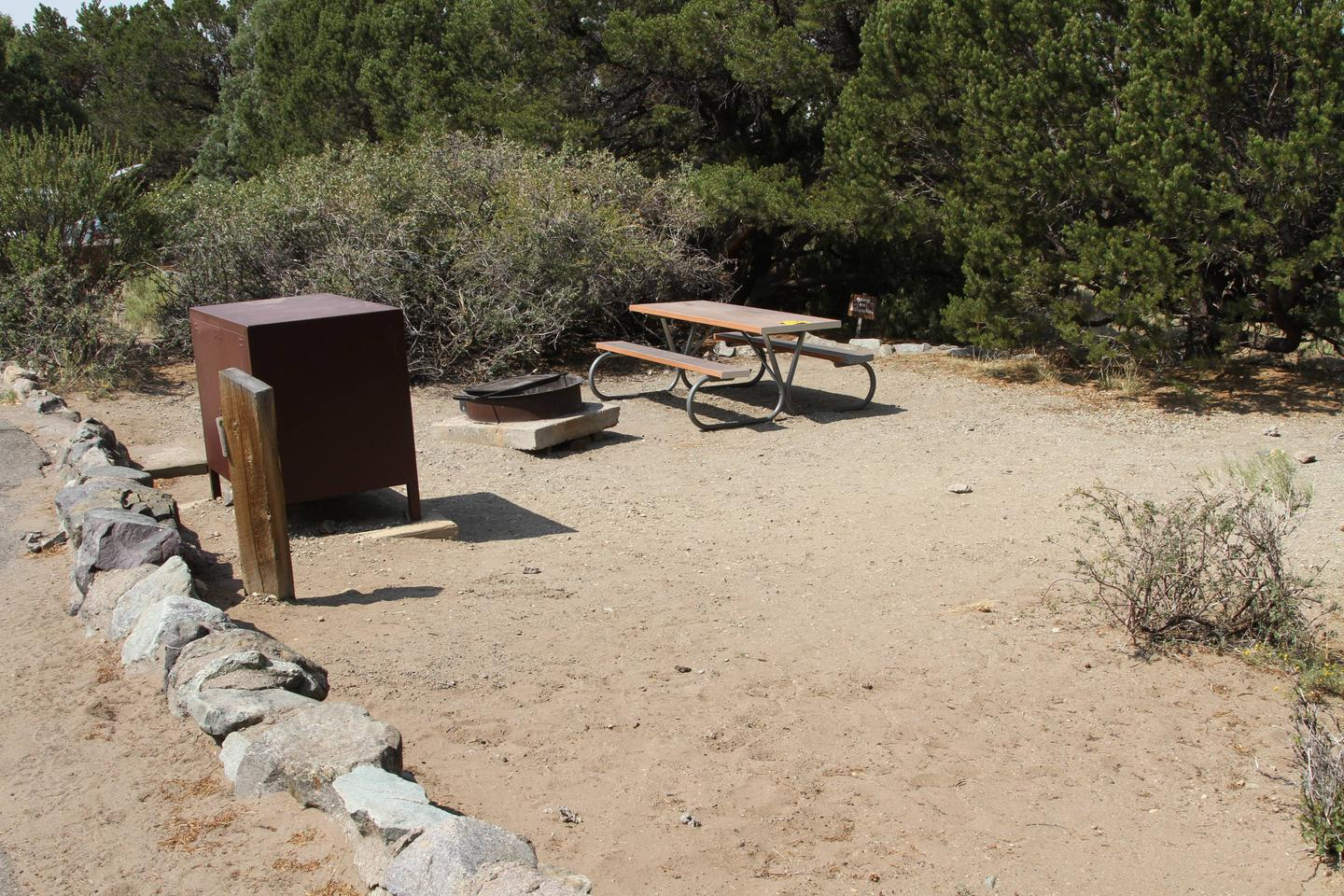 Side view of Site #58 tent pad with bear box, fire ring, and picnic table. Site is surrounded by medium brush and pine trees.Site #59, Pinon Flats Campground