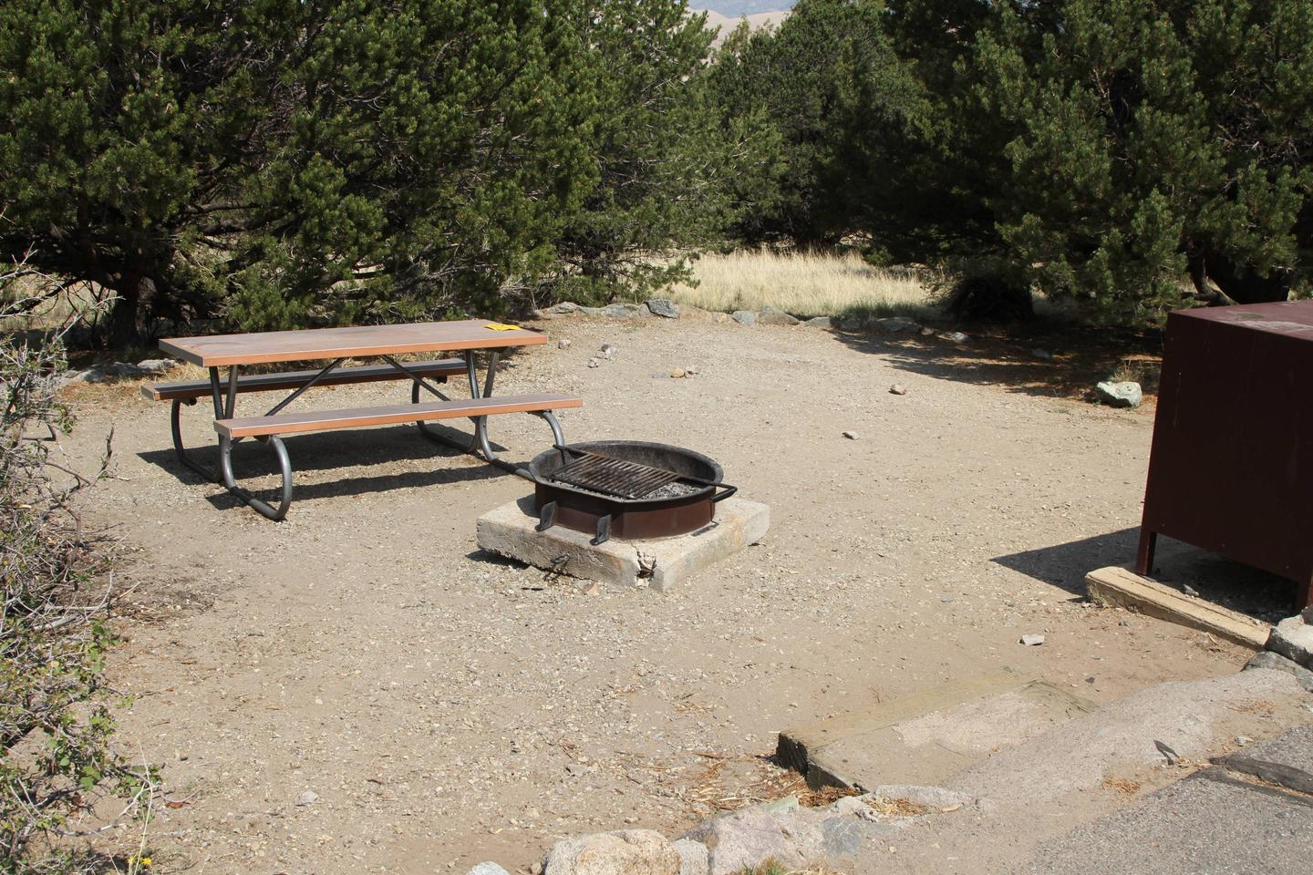 Closer view of Site #59 tent pad with bear box, fire ring, and picnic table.Site #59, Pinon Flats Campground