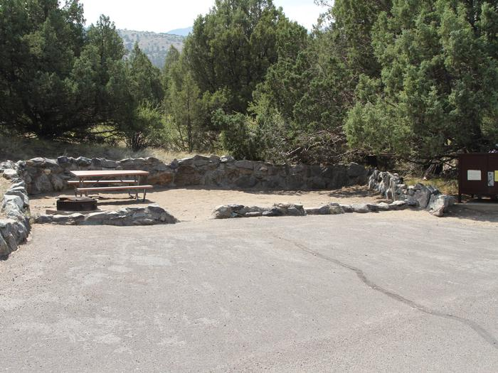 Site #58, Pinon Flats Campground