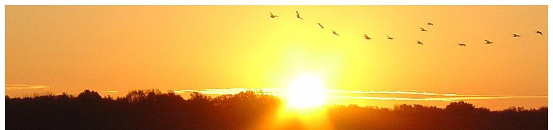 Arkabutla Lake Sunrise