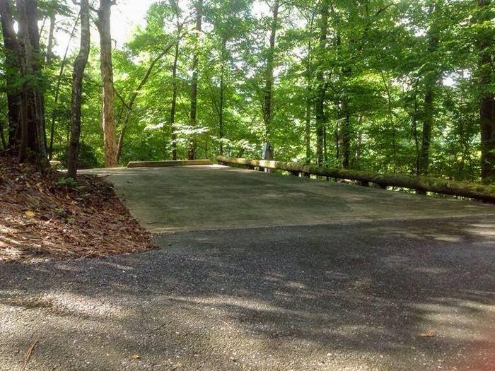 Deerlick Creek Campsite 31