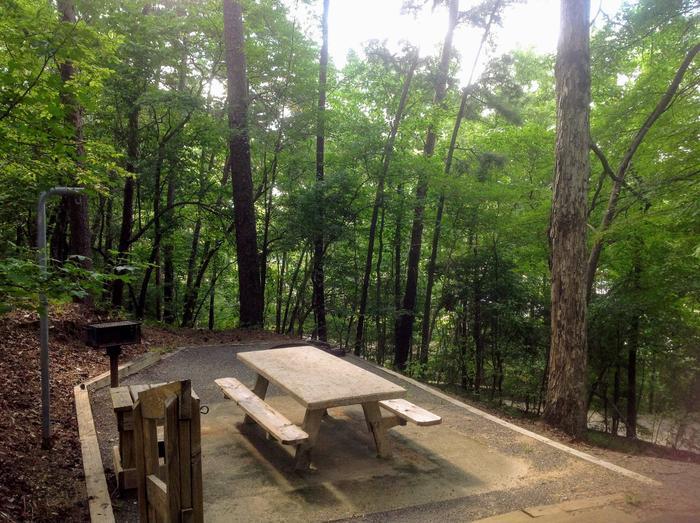 Deerlick Creek Campsite 31 Picnic Area