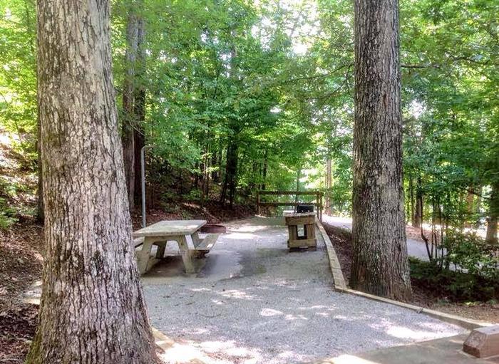 Deerlick Creek Campsite 32 Picnic Area