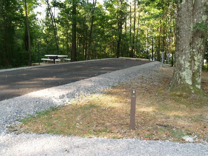 Hernando Point Campground Site 8