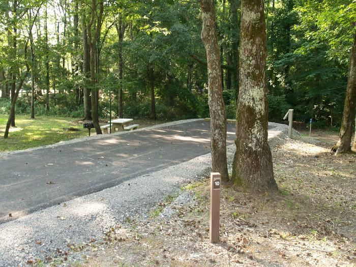 Hernando Point Campground Site 10