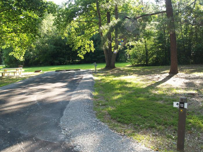 Hernando Point Campground Site 12