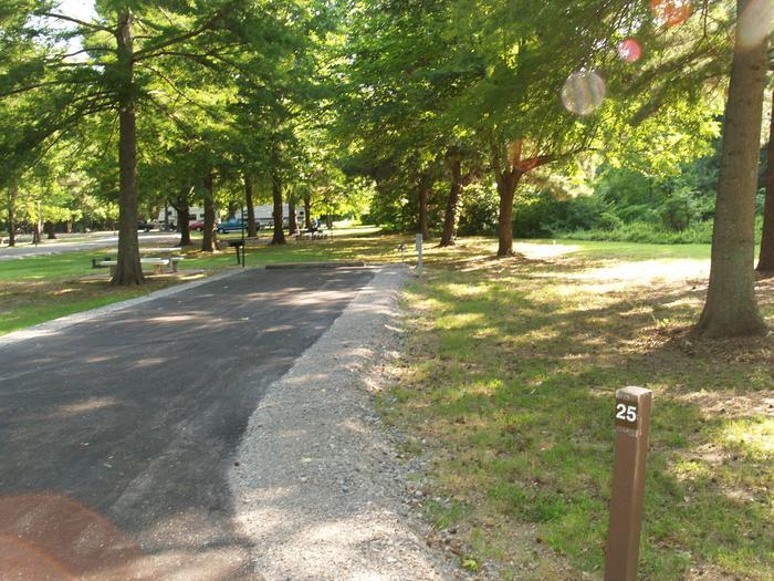 Hernando Point Campground Site 25