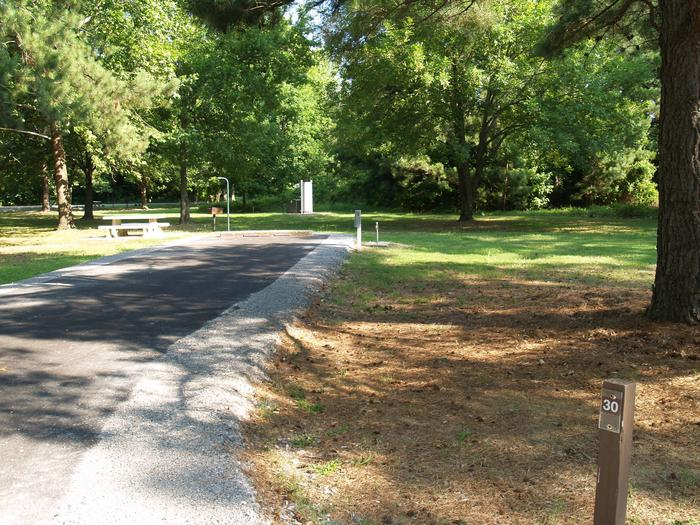 Hernando Point Campground Site 30