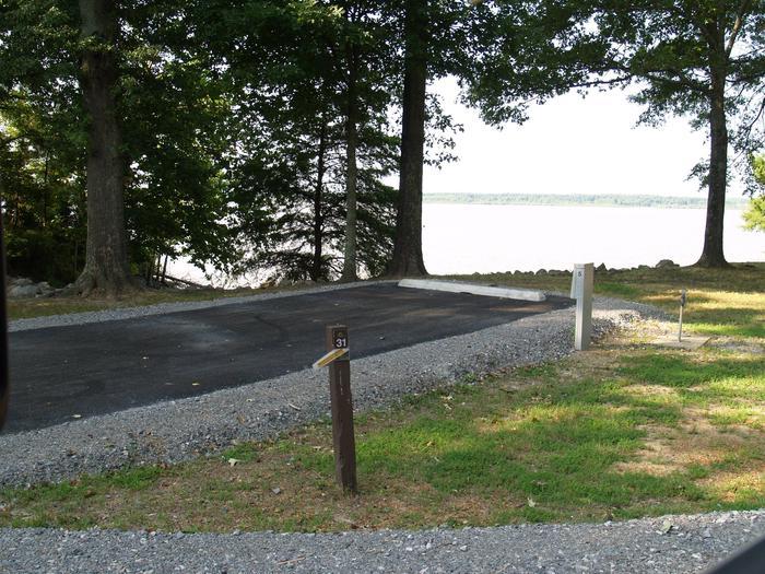 Hernando Point Campground Site 31
