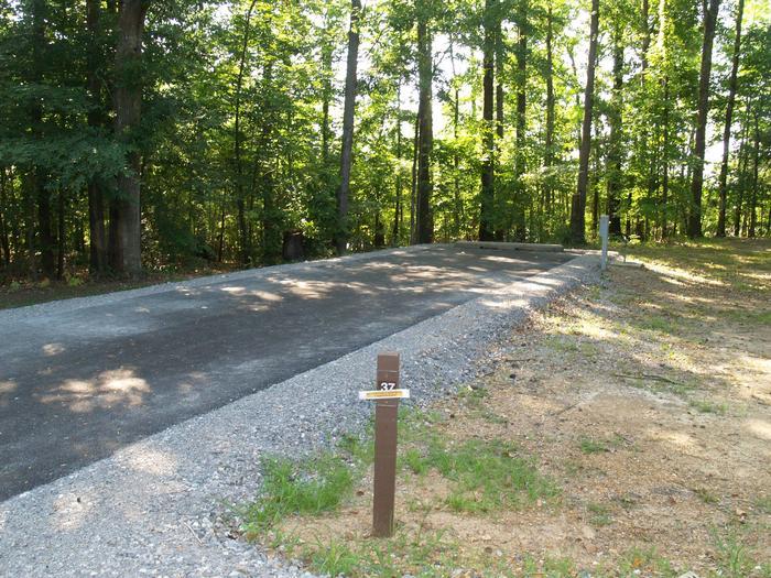 Hernando Point Campground Site 37
