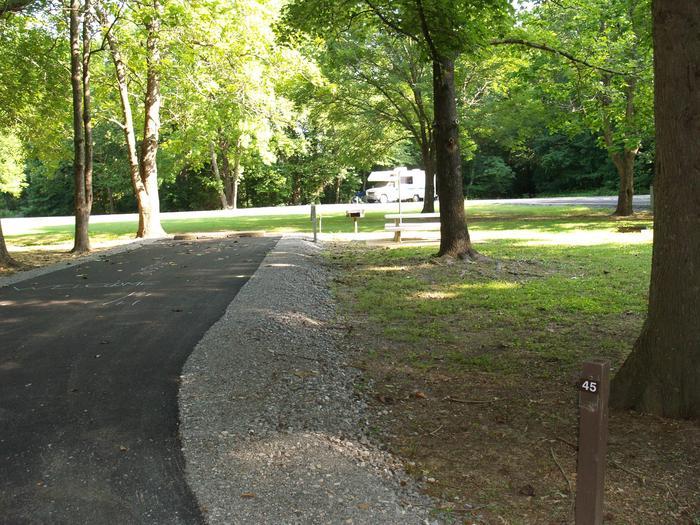 Hernando Point Campground Site 45