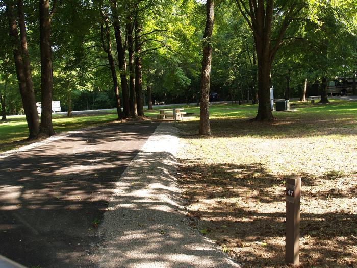Hernando Point Campground Site 47