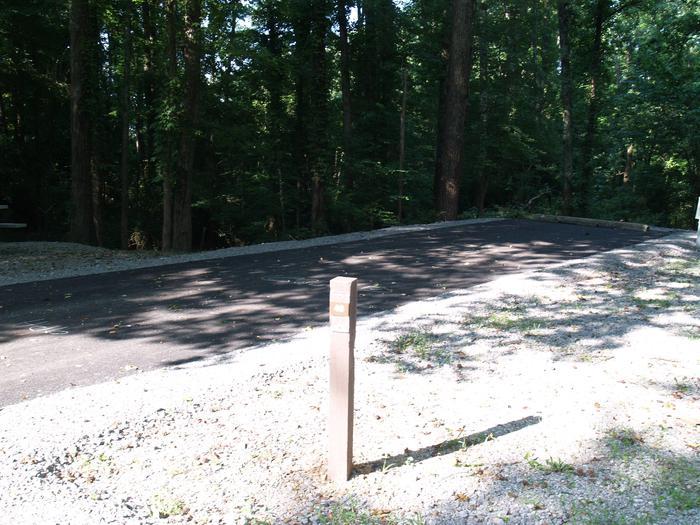 Hernando Point Campground Site 48