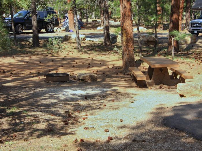 Picnic table, fire pit, and park spot, Mather CampgroundPicnic table, fire pit, and park spot for Oak Loop 244, Mather Campground