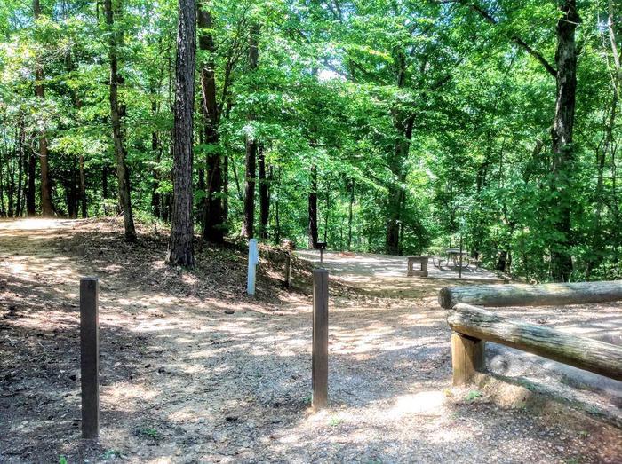 Deerlick Creek Campsite 42 Living Pad