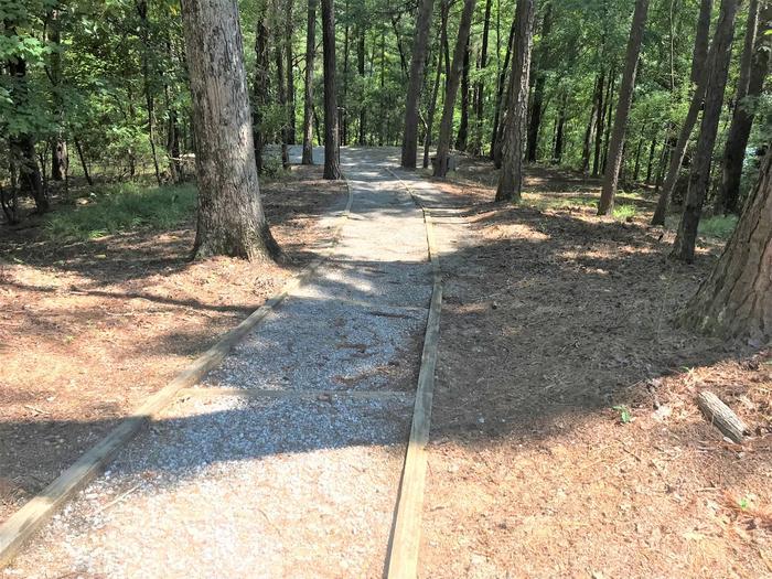 Deerlick Creek Campsite 45 Walkway