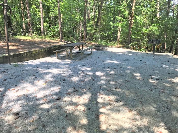 Deerlick Creek Campsite 45 Living Pad
