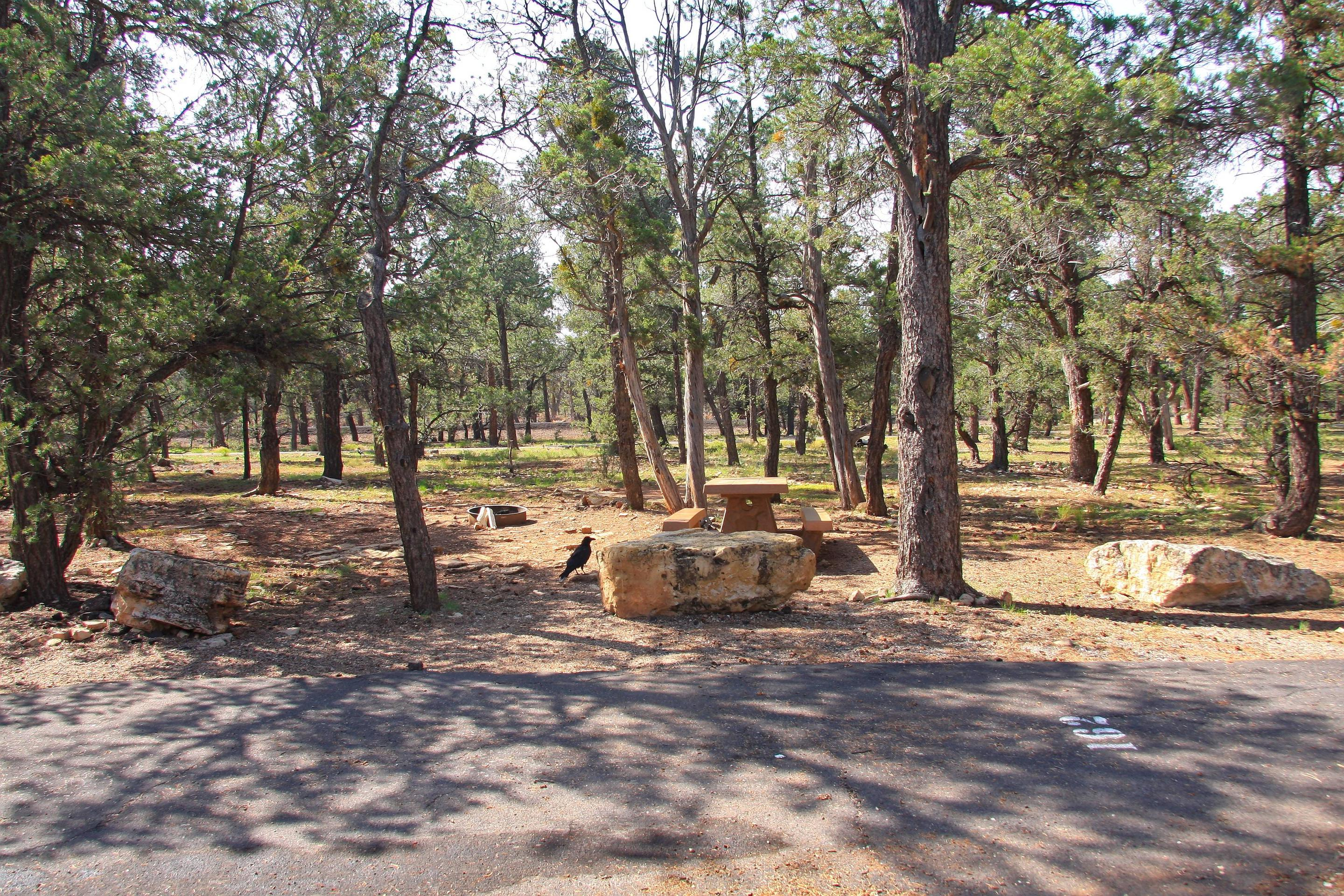 Picnic table, fire pit, and parking spot, Mather Campground