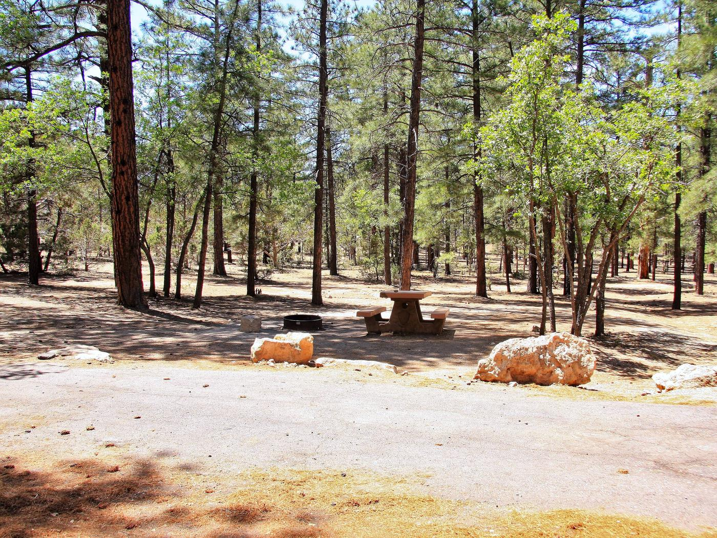 Parking spot, fire pit, and picnic table in Mather CampgroundThe parking spot, fire pit, and picnic table for Aspen loop site 3.