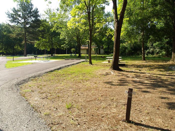 Hernando Point Campground Site 59