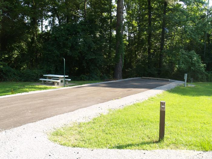 Hernando Point Campground Site 60