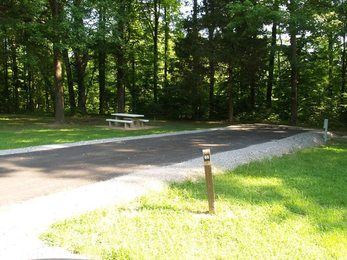 Hernando Point Campground Site 65
