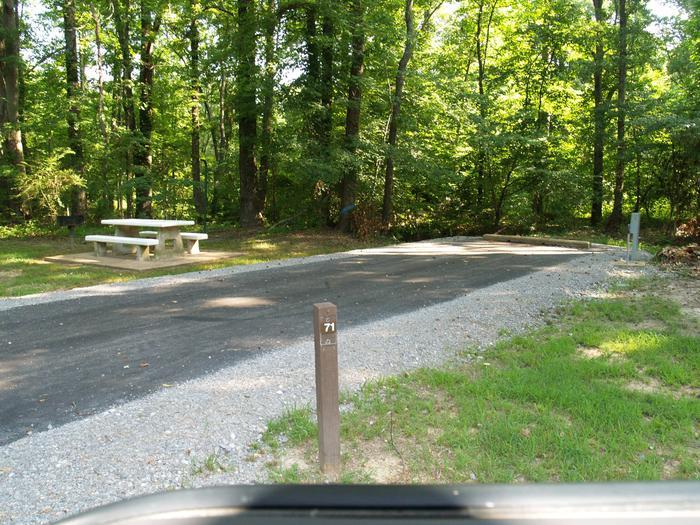 Hernando Point Campground Site 71