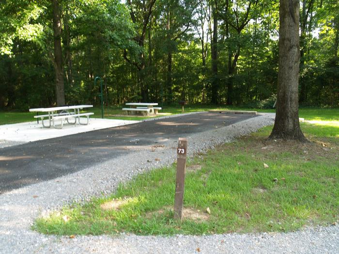 Hernando Point Campground Site 73