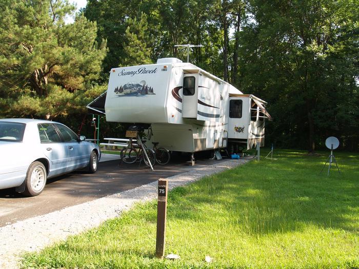 Hernando Point Campground Site 75