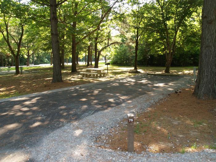 Hernando Point Campground Site 76