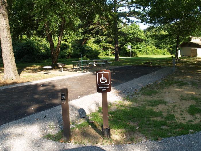 Hernando Point Campground Site 81