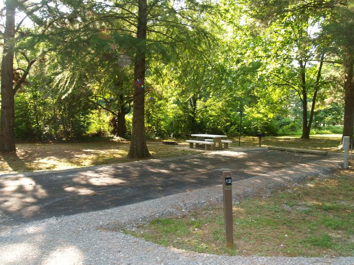 Hernando Point Campground Site 82