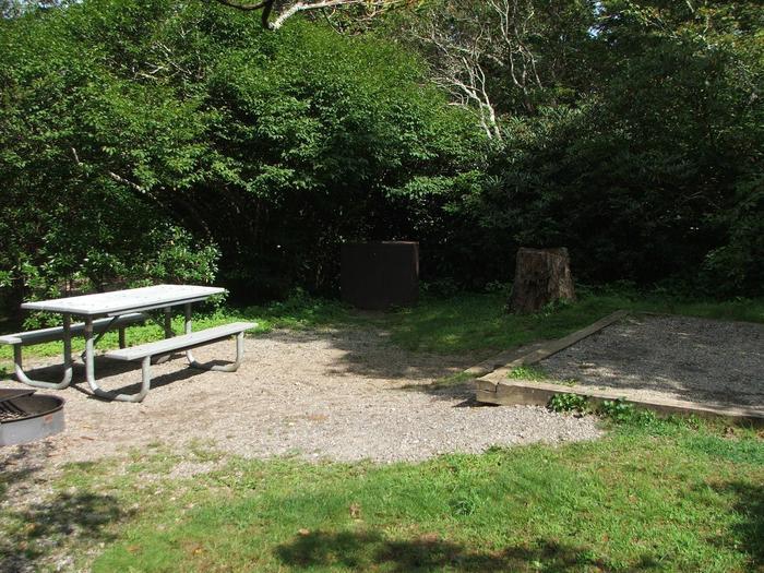 C Loop Site 33 - Tent Nonelectric