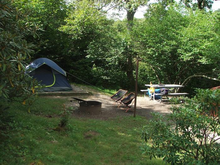 C Loop Site 34 - Tent Nonelectric