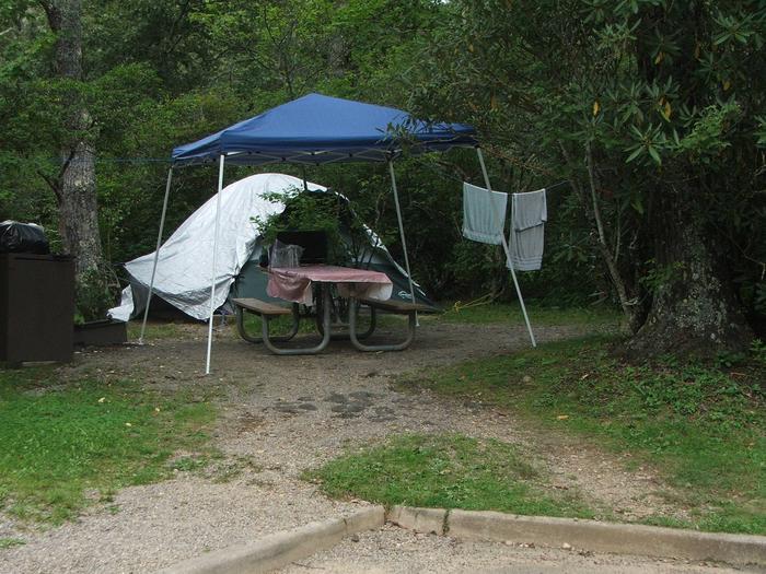 C Loop Site 24 - Tent Nonelectric