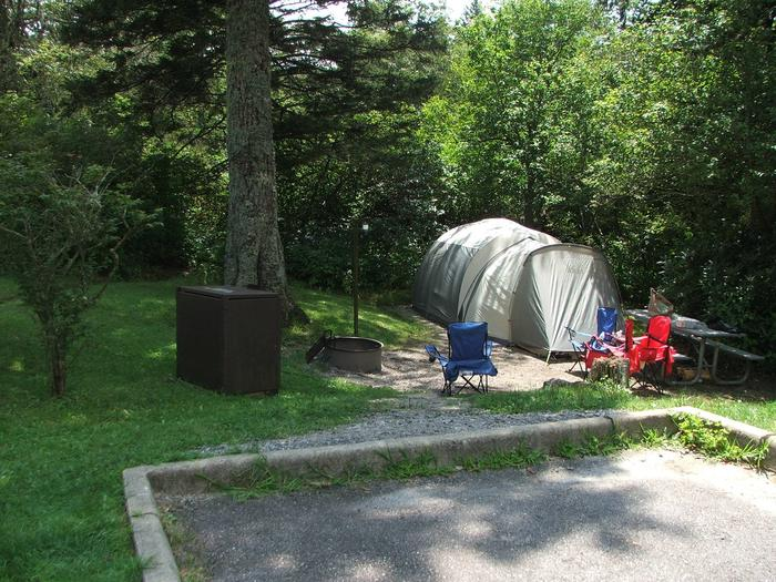 C Loop Site 10 - Tent Nonelectric