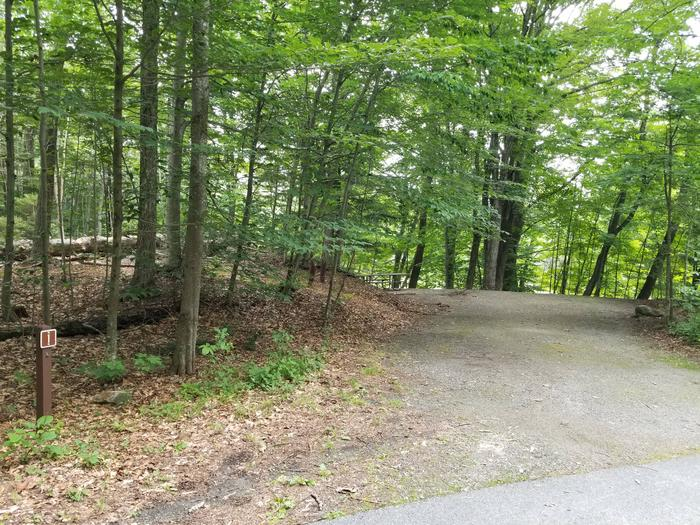 campsite in wooded area with fine gravel surfacingcampsite 1