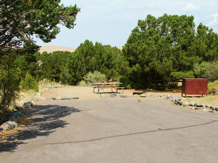 Site #57, Pinon Flats Campground