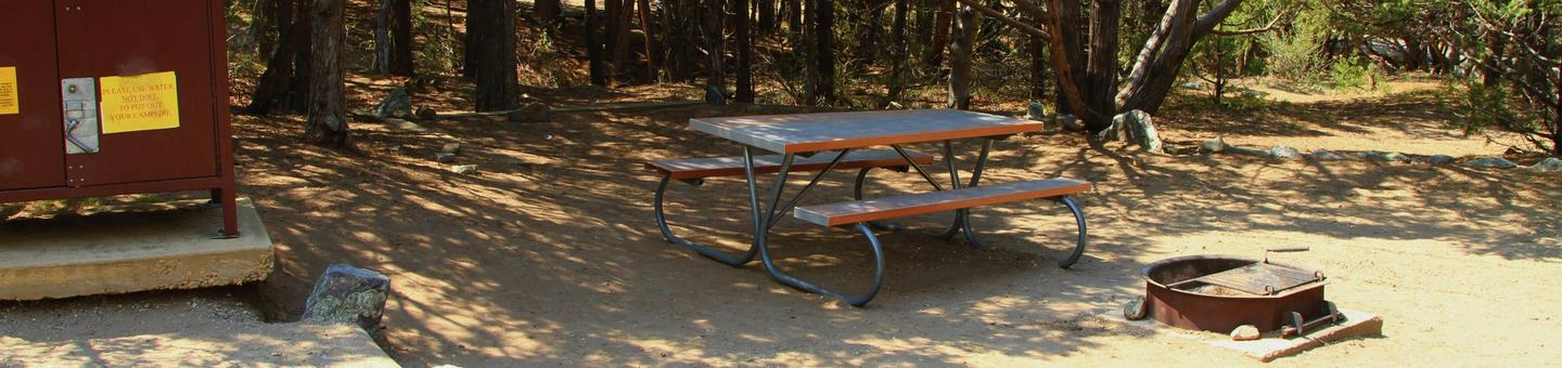 Site #56, Pinon Flats Campground