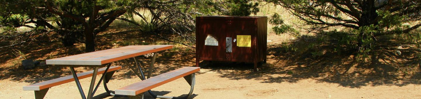 Site #48, Pinon Flats Campground