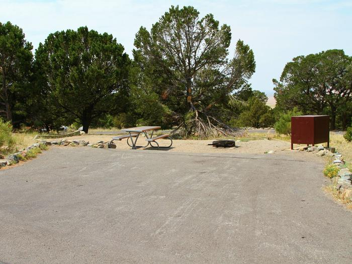 Site #46, Pinon Flats Campground