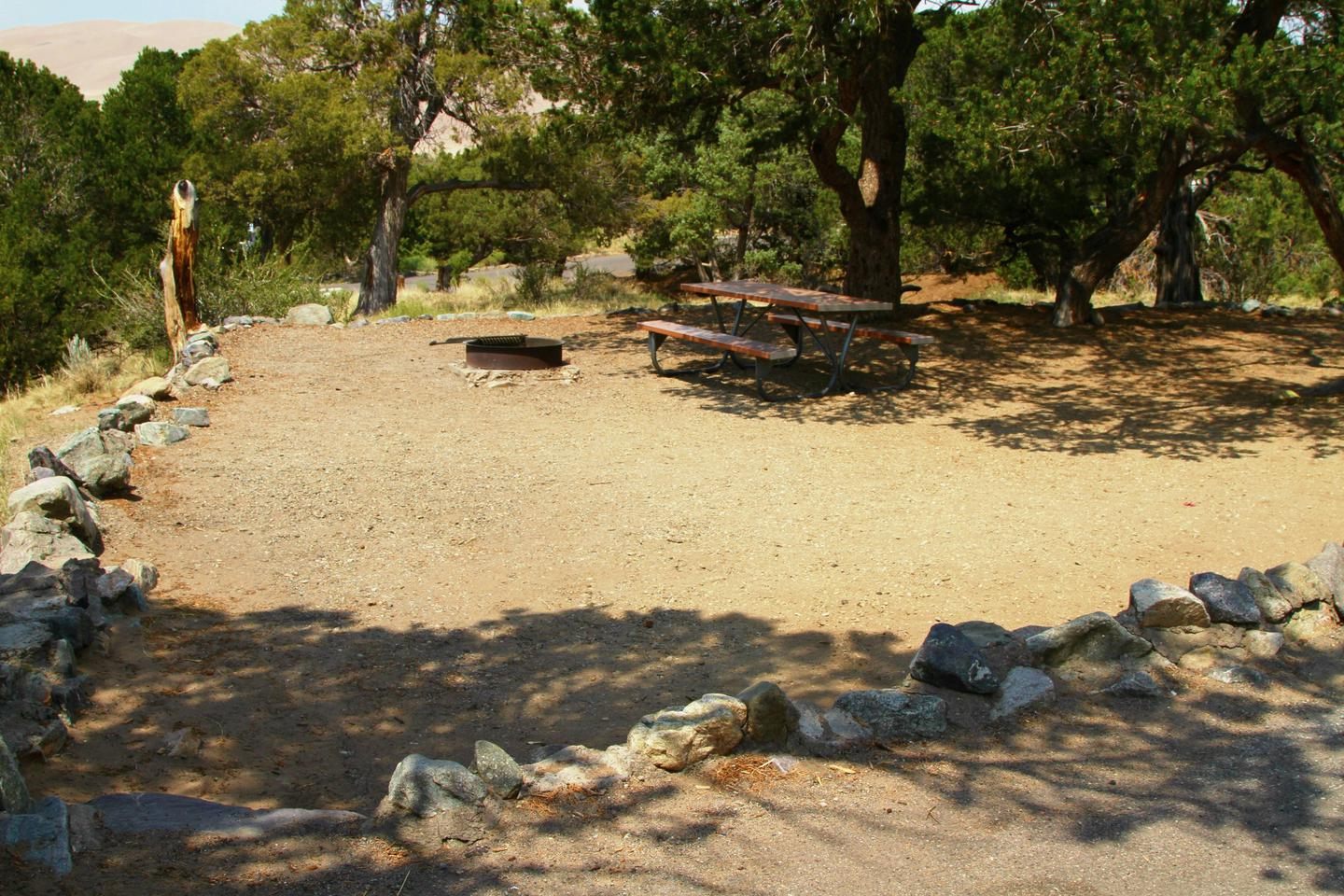 Side view of Site #88 tent pad with fire ring and picnic table. Pine trees shade the corner.Site #88, Pinon Flats Campground