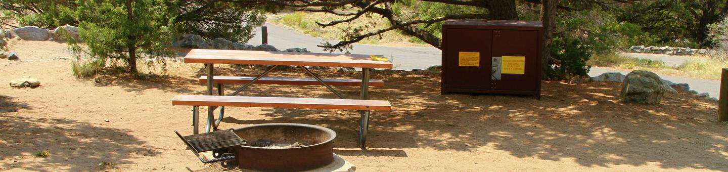 Site #84, Pinon Flats Campground