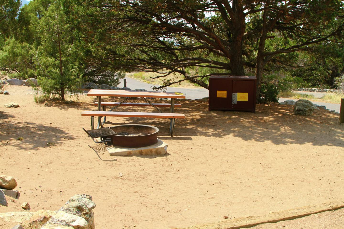 Side view of Site #84 tent pad, with fire ring, picnic table, and bear box. Pine tree grows behind bear box.Site #84, Pinon Flats Campground