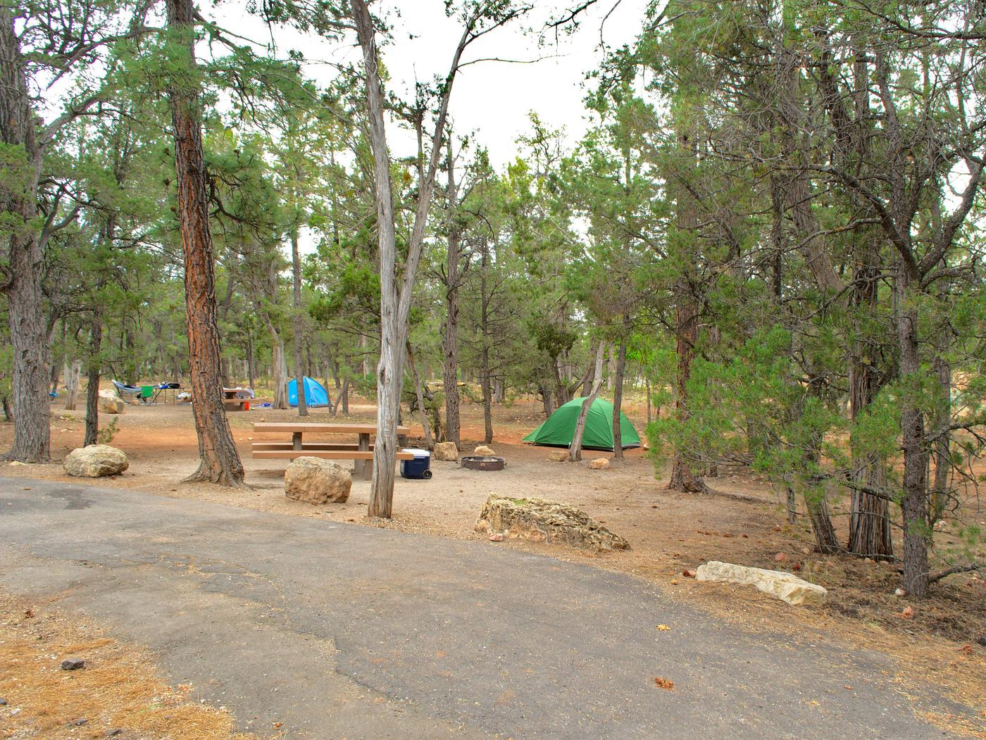The picnic table, fire pit, tent, and parking spot, Mather CampgroundThe picnic table, fire pit, tent, and parking spot for Aspen Loop 40, Mather Campground