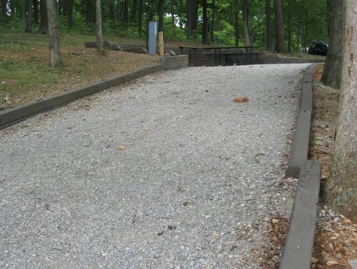 Bailey's Point Site D09